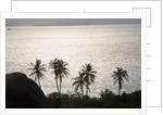 Virgin Gorda, British Virgin Islands by Corbis