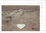 Home Plate on Field of Dirt and Dead Grass by Corbis