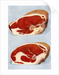 Illustration of two sirloin cuts of beef by Corbis
