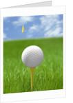 Golf ball on tee by Corbis