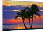 Colorful sunset over Sombrero Beach in the Florida Keys by Corbis