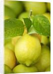 Fresh lemons by Corbis