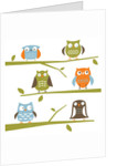 Owls on a branch by Corbis