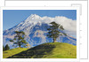 Lush hills in front of Mount Egmont by Corbis