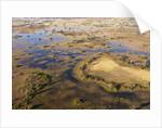 Okavango Delta by Corbis