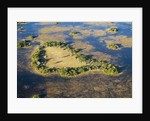 Island in Okavango Delta by Corbis