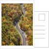 Road through Autumn forest by Corbis