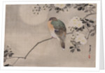 Japanese watercolor of bird perched on a branch of a blossoming tree by Corbis