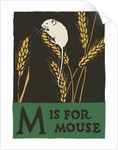 M is for mouse by Corbis