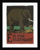 E is for elephant by Corbis