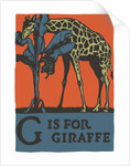 G is for giraffe by Corbis