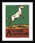 A is for antelope by Corbis