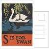 S is for swan by Corbis