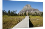 The pathway to the view of Hidden Lake by Corbis