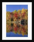 Simon Lake Reflection, Naughton, Ontario, Canada by Corbis