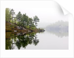 Spring Foliage on Birch Trees and Rock Outcrops Reflected in Laurentian Lake, Lake Laurentian Conservation Area, Sudbury, Ontario, Canada. by Corbis