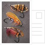 Atlantic Salmon Flies Still Life, Canada. by Corbis