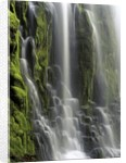 USA, Oregon, Proxy Falls - Waterfall Details by Corbis