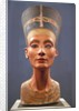 Bust of Nefertiti by Corbis