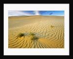 Pattern in sand dunes by Corbis