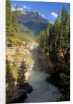 A vertical image of the Athabasca falls on the Athabasca river with a colorful rainbow and Mount Kerkeslin looming above all. by Corbis