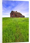 Abandoned red barn sitting on the top of a hill on a pioneer homestead in rural Alberta Canada by Corbis