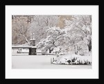 Snow covered trees with a footbridge in a public park, Boston Public Garden, Boston, Massachusetts, USA by Corbis