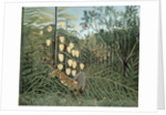 In a Tropical Forest (Struggle between Tiger and Bull) by Henri Rousseau
