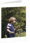 Boy wearing bib overalls blowing on dandelion head by Corbis