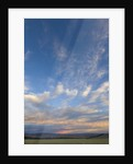 Colorful clouds in blue sky, fall evening, South Island, New Zealand by Corbis