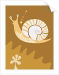 A snail by Corbis