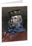 Giuseppe Garibaldi by Corbis