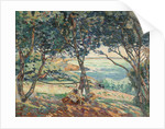 Paysage d'Agay by Armand Guillaumin