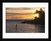Stand-up paddler at sunset on Maui, Hawaii by Corbis