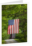 American flag hanging above gravel road by Corbis