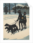 Children on ice skates pulled by dogs by Corbis