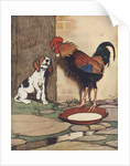 Dog and rooster conversing by Corbis