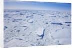 Pack ice on Antarctica by Corbis