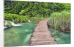 Wooden footbridge in Plitvice National Park by Corbis