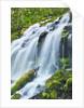 Scenic waterfall by Corbis