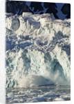 Arctic Ice, Svalbard by Corbis