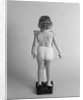 Back view of chubby girl wearing panties weighing herself by Corbis