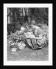 1930s 1940s woman dressed in print dress striped apron kneeling in flowers garden reading a gardening manual by Corbis
