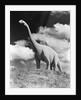 1950s statue of large extinct long neck gigantic brontosaurus on hilltop jurassic tourist attraction long neck gigantic south dakota usa by Corbis