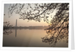 Sunrise over Tidal Basin by Corbis