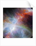 View of the Orion nebula highlighting fledging stars hidden in the gas and clouds by Corbis