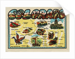 Colorado travel decal by Corbis