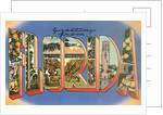 Greetings from Florida by Corbis