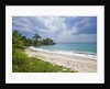 Tropical beach, Samana Peninsula, Dominican Republic by Corbis
