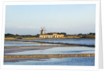 Windmill and saltworks, Marsala, Sicily, Italy by Corbis